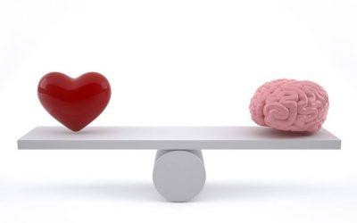 Érzelmi intelligencia (EQ)– valóban a sikeres élet egyik záloga?